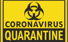 What Really Happend During Quarantine?